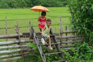 dzieci napolu ryzowym