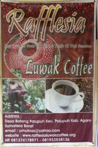 Rafflesia Luwak Coffee