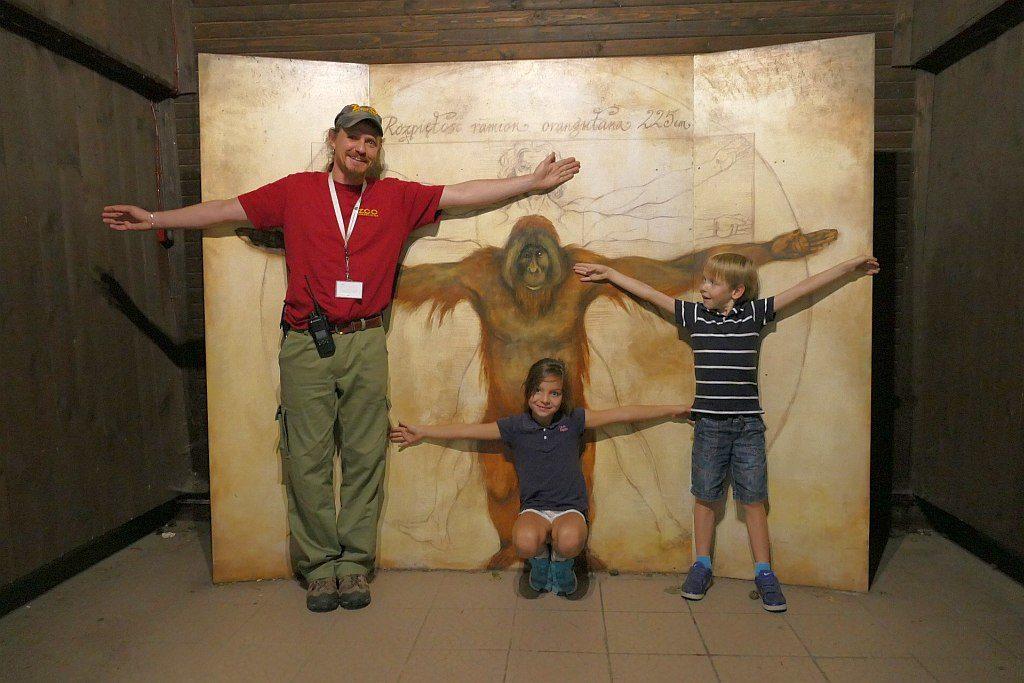 opiekun orangutanów