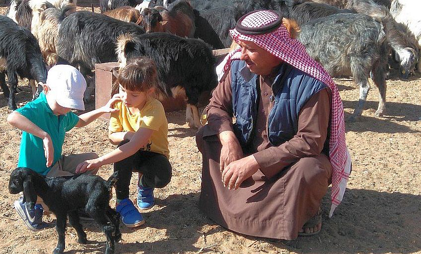 dziecko ibeduini, ufność, dzieci, kozy