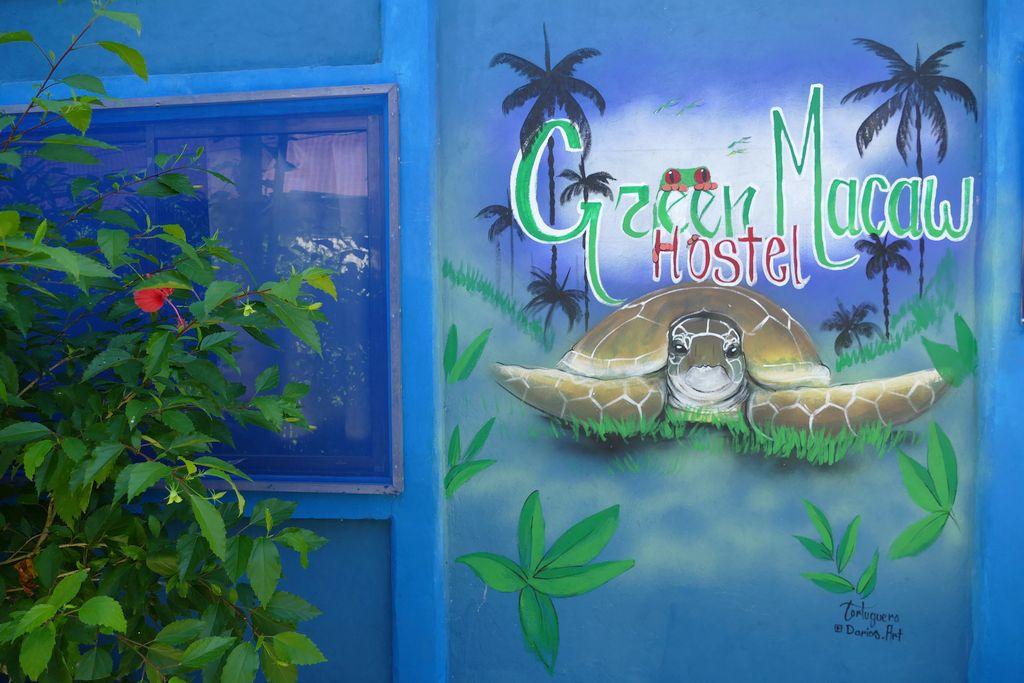Tortuguero, hostel