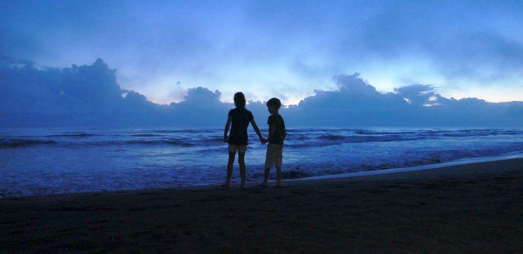 Tortuguero, plaża oporanku, żółwie