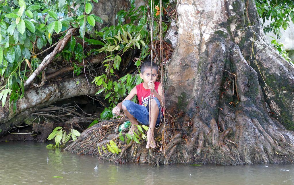 Tortuguero, dziecko, rzeka